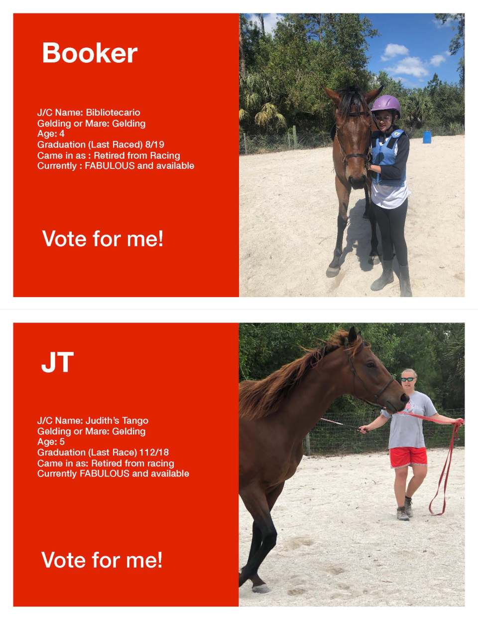 Horse Voting Sheets Template Boooker JT jpg