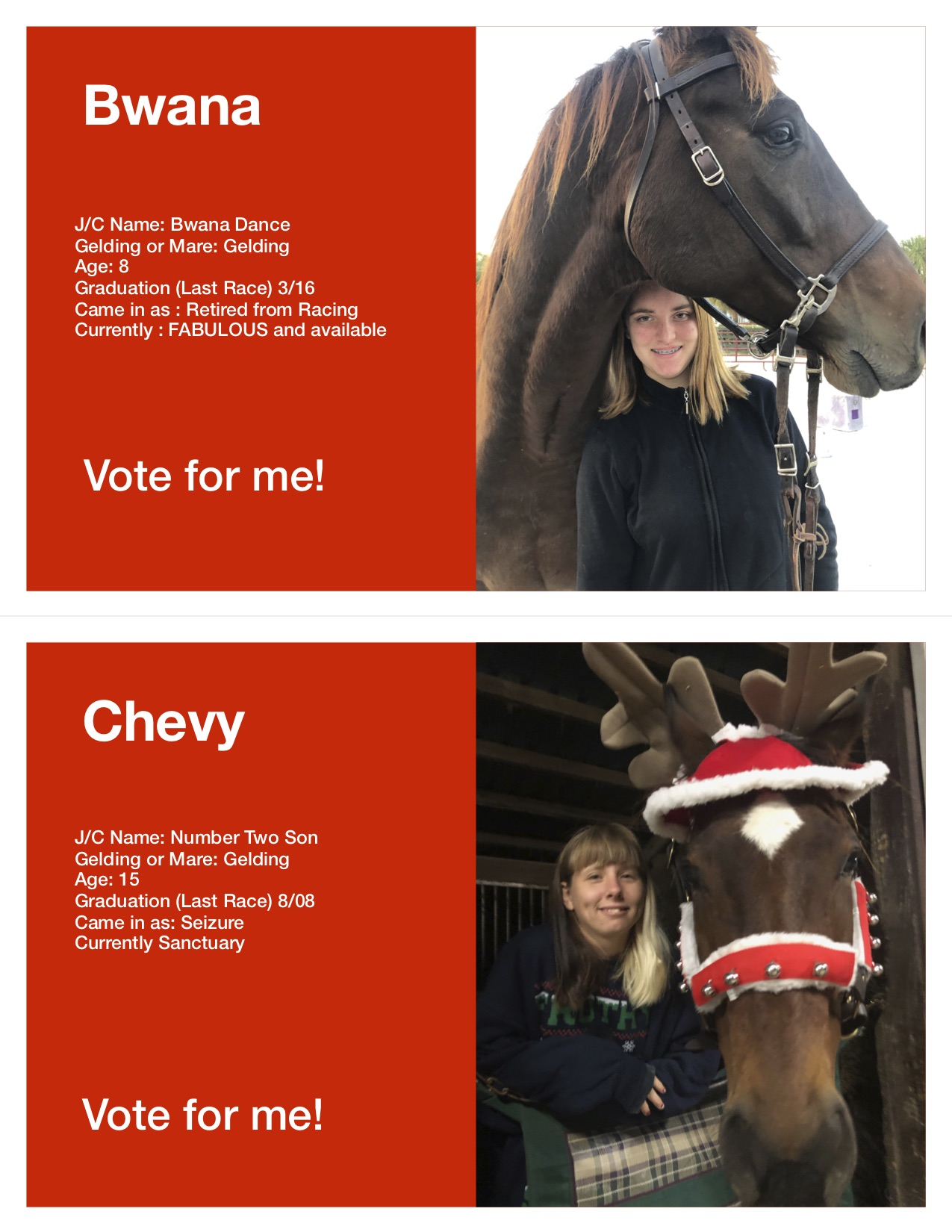 Horse Voting Sheets Template Bwana Chevy jpg