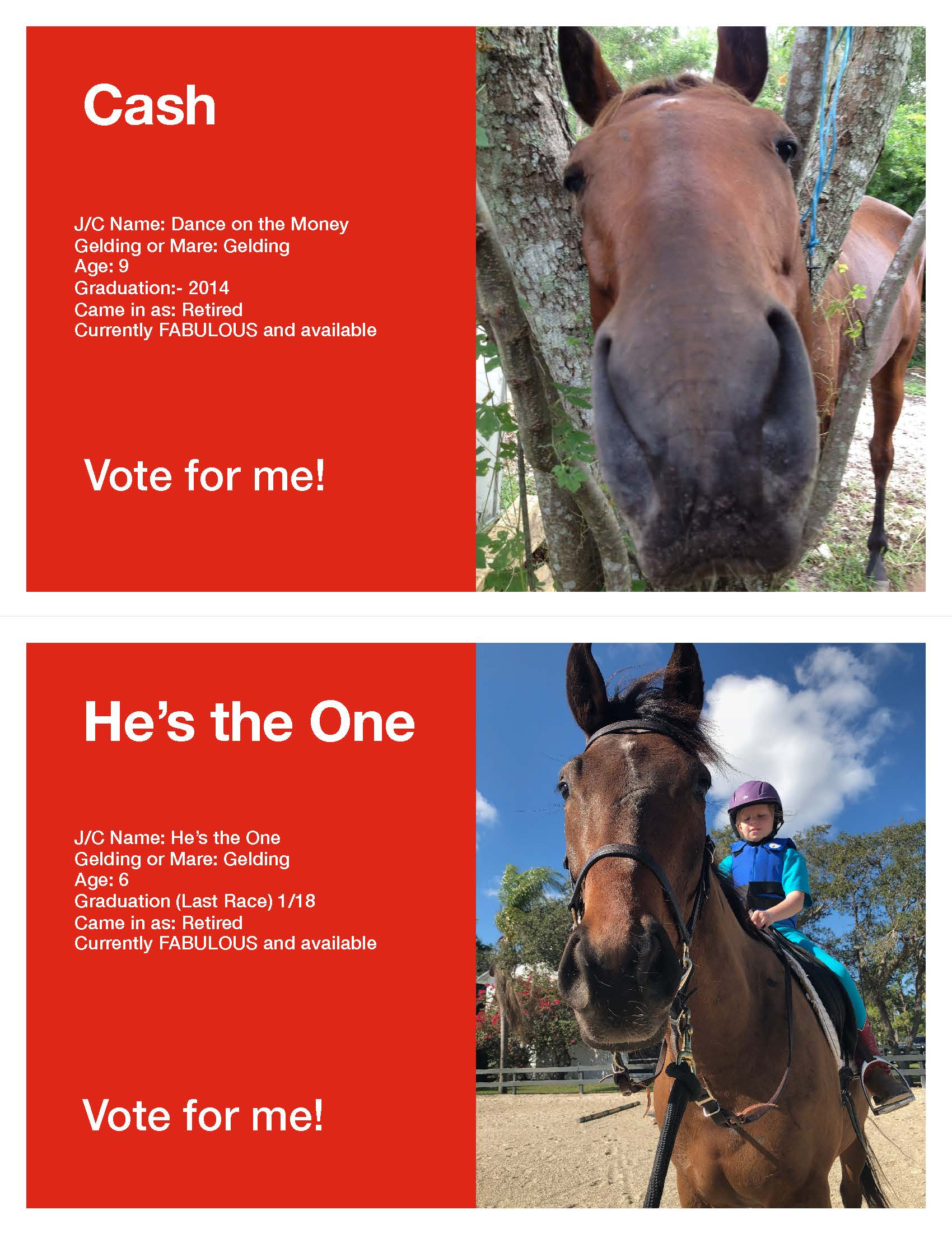 Horse Voting Sheets Template Cash He's the One JPG