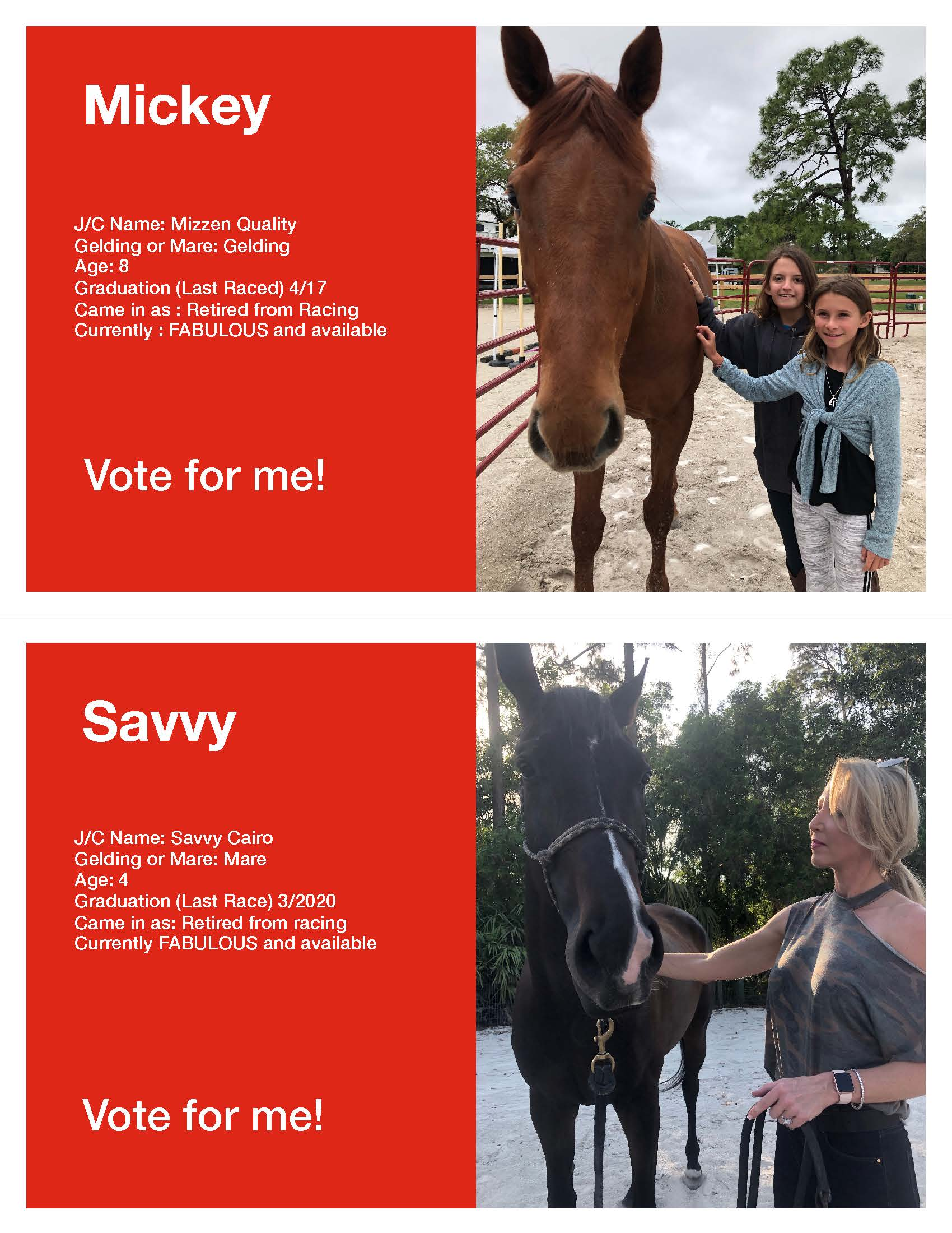 Horse Voting Sheets Template Mickey Savvy jpg